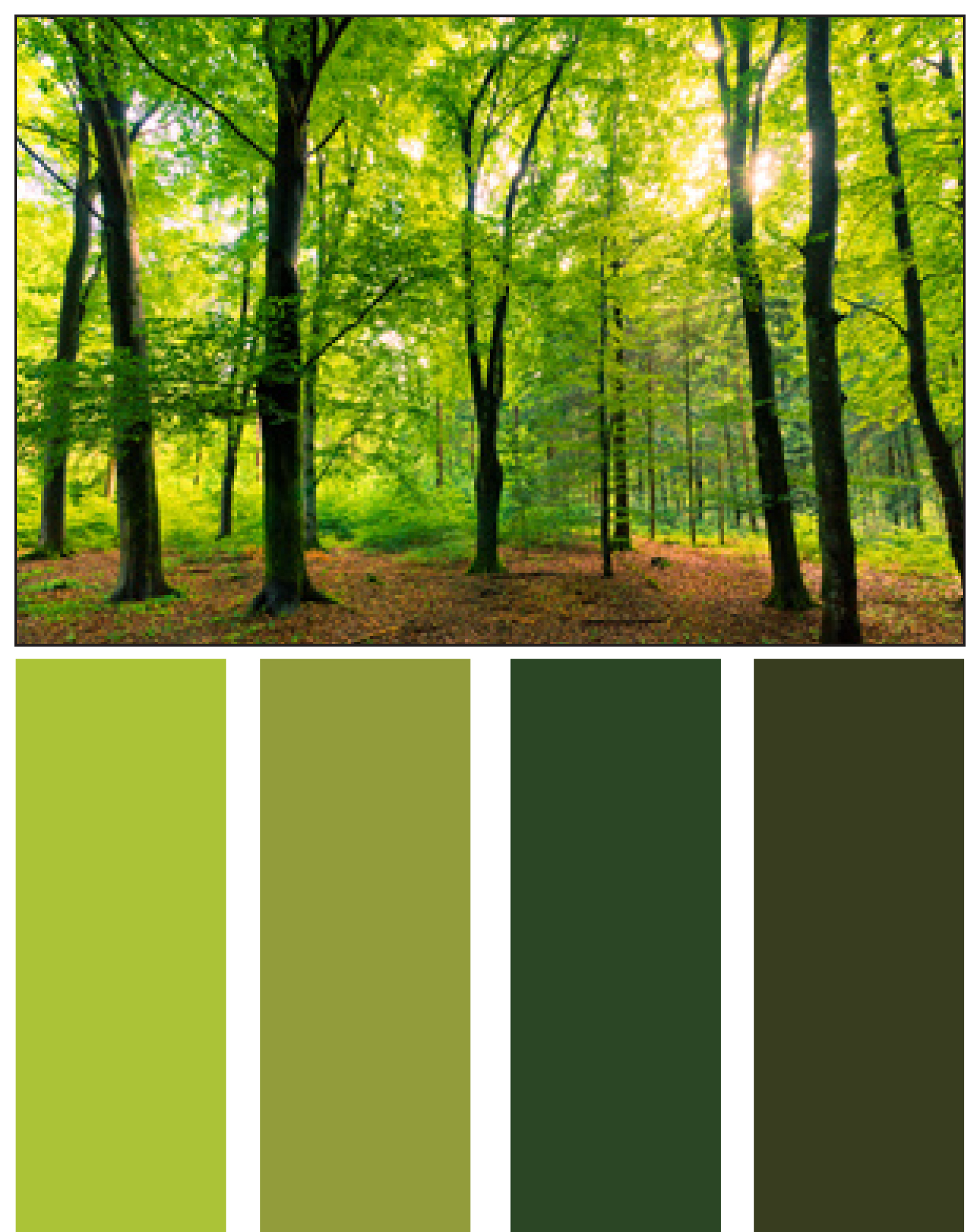 palette nature palettes colors forest colour schemes paint combinations grass coloring tradition homesbytradition