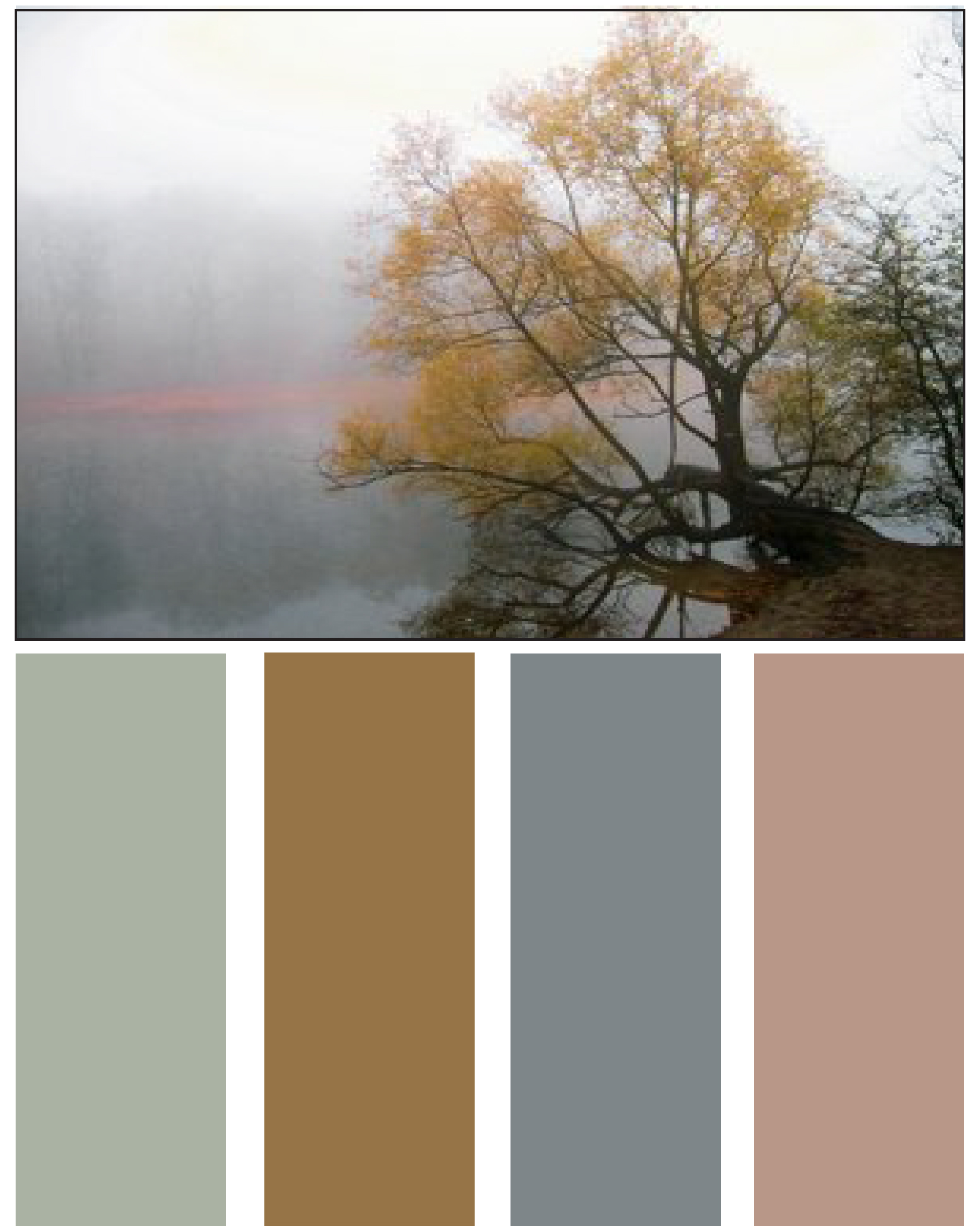 Wall Colour Inspiration: Home Design Ideas: Nature's Color Palette