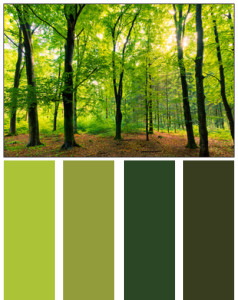 Home Design Ideas Nature S Color Palette Homes By Tradition